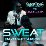 Snoop Dogg vs. David Guetta - Sweat (David Guetta Remix)