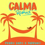 Pedro Capó y Farruko - Calma (Remix)